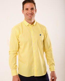 camisa-yellow-summer-sirlemon-1-fondo
